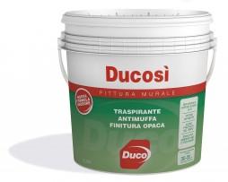 ducosi-5l.jpg